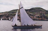 Horta Regatta from the tradional baleiros